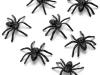 bichos-aranhas