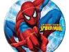 artigo-homem-aranha-prato
