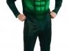 adulto-masculino-super-heroi-lanterna
